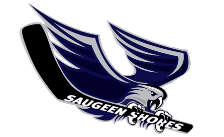 saugeenshoreswinterhawks
